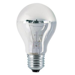 Ampoule à Incandescence Standard E27 40W Calotte Argentée Orbitec ...