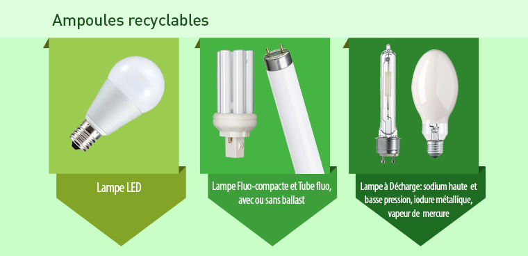 Ampoules recyclables